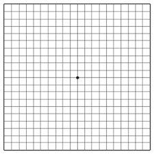 Amsler Retina Grid Test